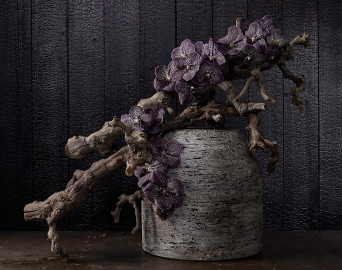 HAI shou sugi ban charred wood photographed by Doug Human